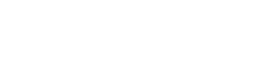 DELL EMC Partner Platinum